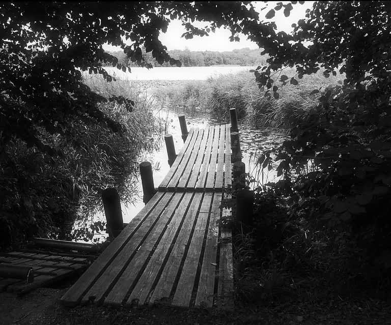 Lyngby sø
